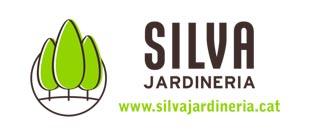 IVI Creative · Páginas Web | Redes Sociales | Mantenimiento Web y SEO | Hosting